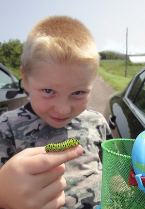 boy with caterpillar image